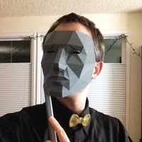 Small Low Polygon Mask - Replicator Printable 3D Printing 195117