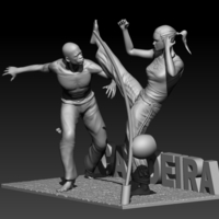 Small Capoeira Fight 3D Printing 195520