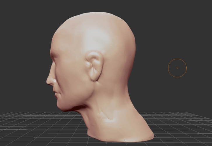 roughly formed Head as a template 3D Print 196217