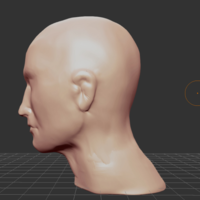 Small roughly formed Head as a template 3D Printing 196217