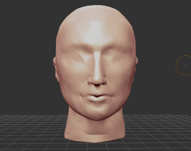 roughly formed Head as a template 3D Print 196218
