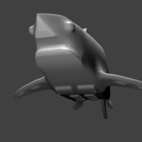 Small Strong Shark!!! 3D Printing 196373