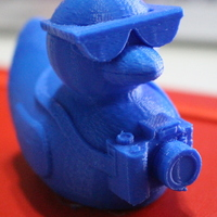 Small Tourist Duck 3D Printing 19756