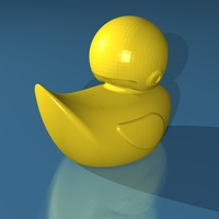 Small Skeptical Duck 3D Printing 19773