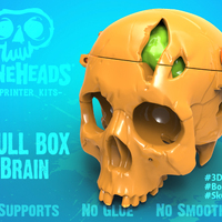 Small Boneheads: Skull Box w/ Brain - via 3DKitbash.com 3D Printing 19994