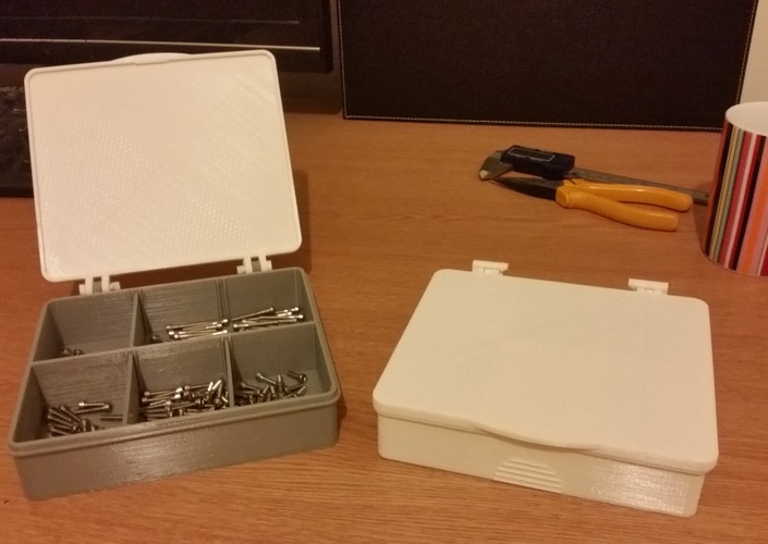 Multi Compartment Storage Box With Hinged Lid. 3D Print 20358