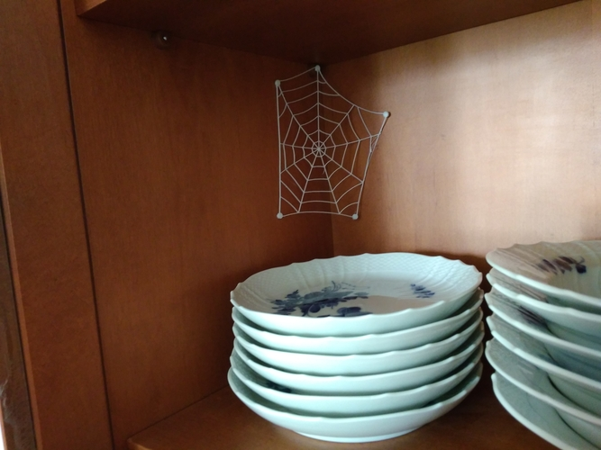 flexible spider web 3D Print 204546