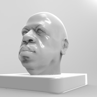 Small african head model sculpted on only 3 pics 3D Printing 2061