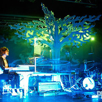 Small Imogen Heap 2010 tour tree 3D Printing 20616