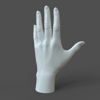 Small Casual Woman Hand Model F1P1D0V1hand 3D Printing 206309