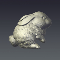 Small Rabbit 3D Printing 207255