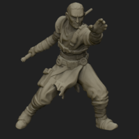 Small Avenging Acolyte 3D Printing 207328