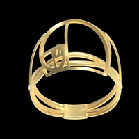 Small Fancy Fibonacci ring  3D Printing 208399