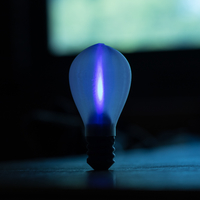 Small Light Bulb 3D Printing 208414