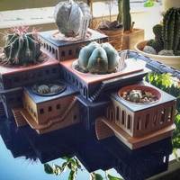Small CactusHotel 3D Printing 209268