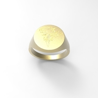 Small Signet Ring: Lion Heart 3D Printing 210934