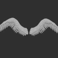 Small Wings 3D Printing 212467