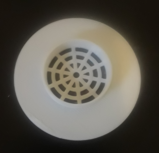 Flexible Shower Drain Cover 3D Print 213508