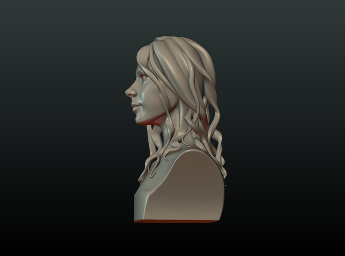 ​Woman Head and Hairstyle 3D Print 213732