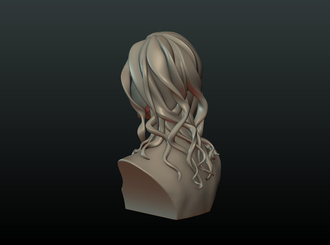 ​Woman Head and Hairstyle 3D Print 213734