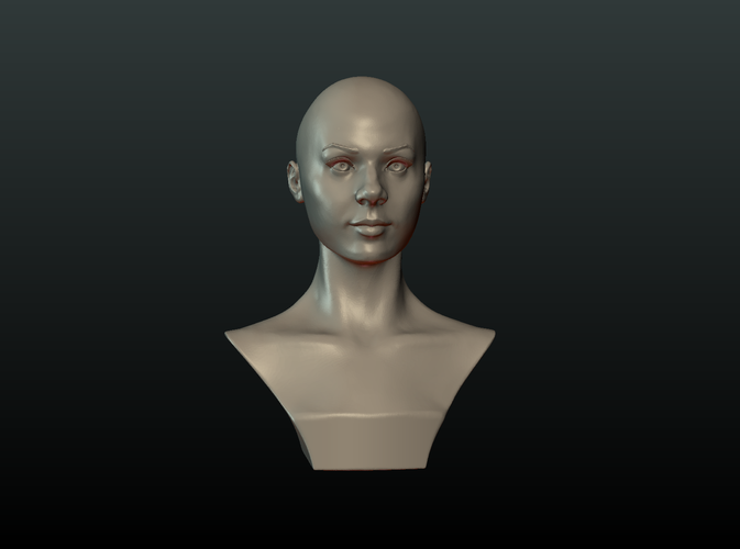 ​Woman Head and Hairstyle 3D Print 213742
