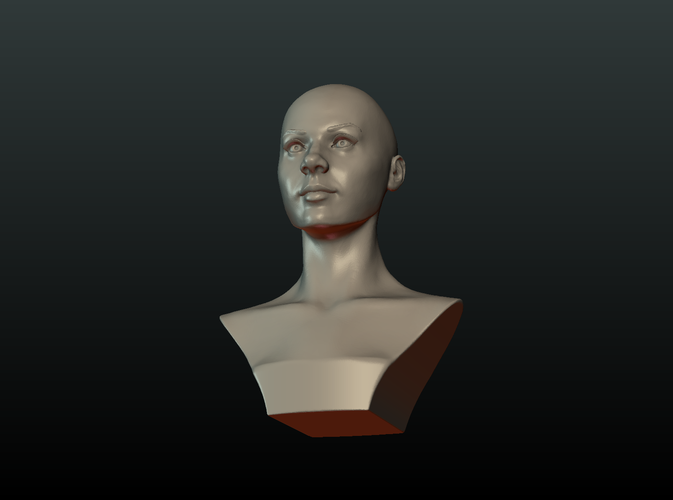 ​Woman Head and Hairstyle 3D Print 213743
