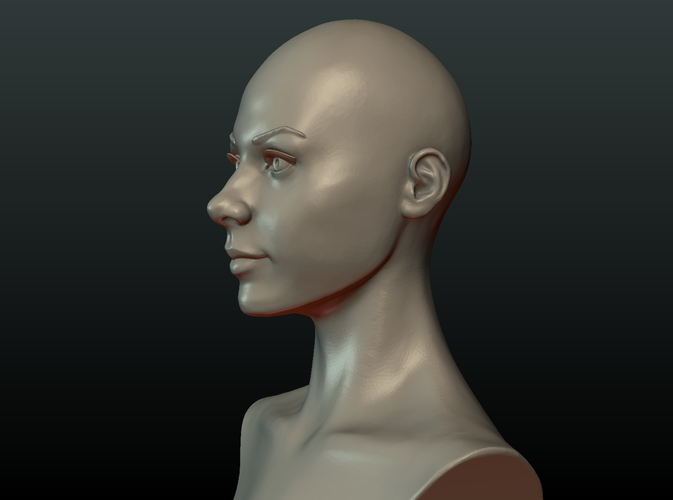 ​Woman Head and Hairstyle 3D Print 213744