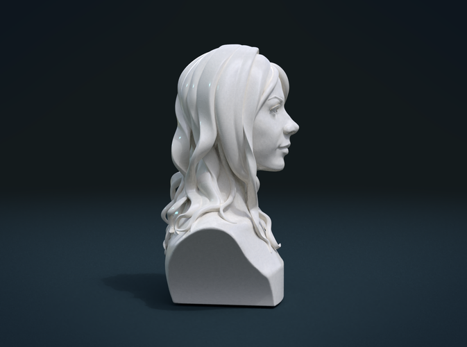​Woman Head and Hairstyle 3D Print 213752
