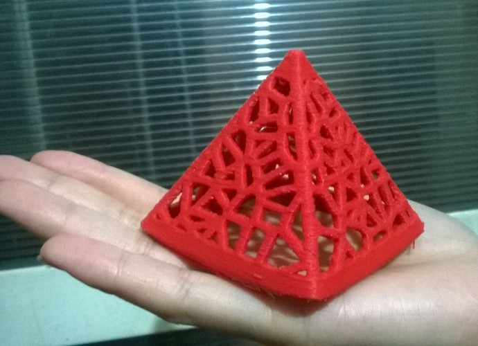 Wired Pyramid 3D Print 21509