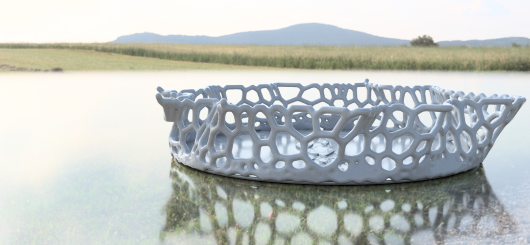 Design Bowl  (with voronoi diagram) 3D Print 216273