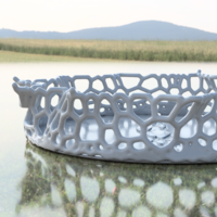 Small Design Bowl  (with voronoi diagram) 3D Printing 216273