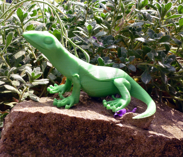 Medium Little Lizard 3D Printing 21788