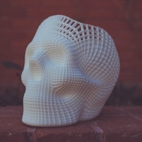 Small Skull Graphics 3D Printing 220164