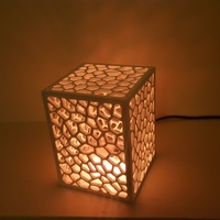 Small Cell Structure Lamp 3D Printing 220262