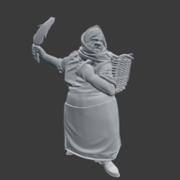 Small Fish Wife NPC 3D Printing 220804