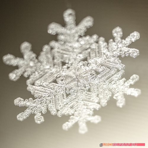 Real snowflake - Christmas Tree decoration - size: 65mm 3D Print 221343