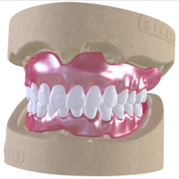 Small Digital Full Dentures with Combined Glue-in Teeth Arch 3D Printing 221681
