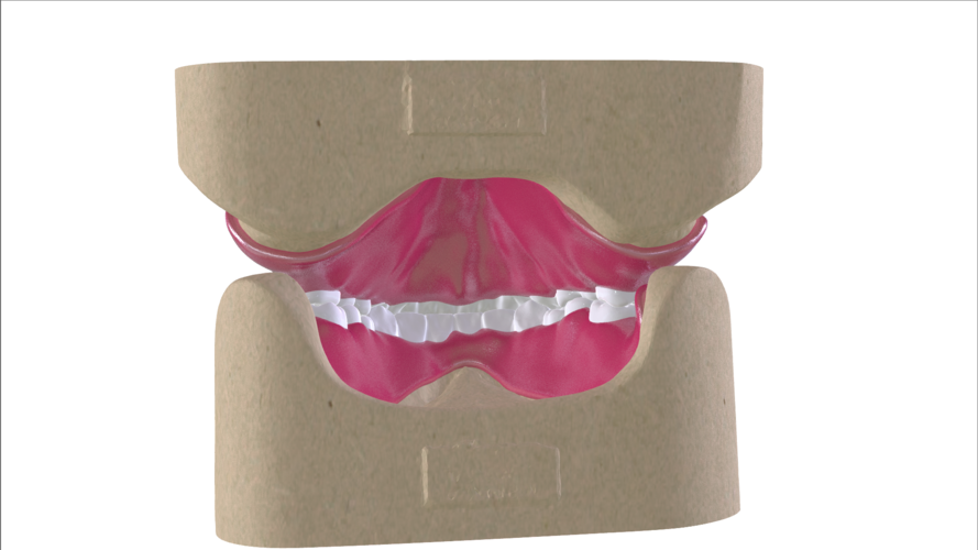 Digital Full Dentures with Combined Glue-in Teeth Arch 3D Print 221683