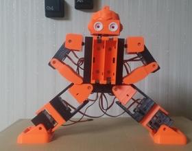 Pin Robonoid – eYe (WS2812) 3D Printing 224183