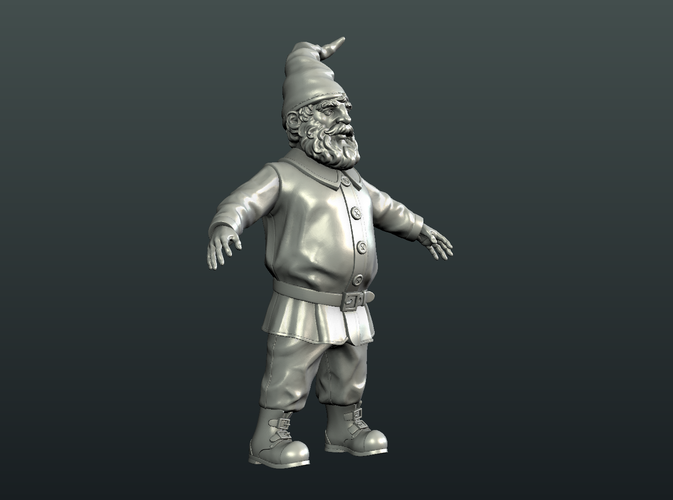 Gnome Sculpture 3D Print 224878