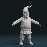 Small Gnome Sculpture 3D Printing 224898
