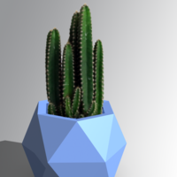 Small Vases style 3D Printing 225607