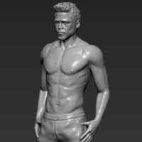 Small Tyler Durden Brad Pitt from Fight Club 3D printing ready 3D Printing 229935
