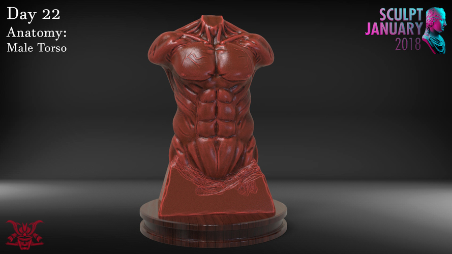 Male Torso Sculpture 3D Print 230188