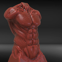 Small Male Torso Sculpture 3D Printing 230191