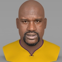 Small Shaq ONeal bust ready for full color 3D printing 3D Printing 230481