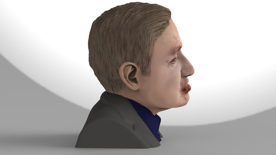 Stephen Hawking bust ready for full color 3D printing 3D Print 230639