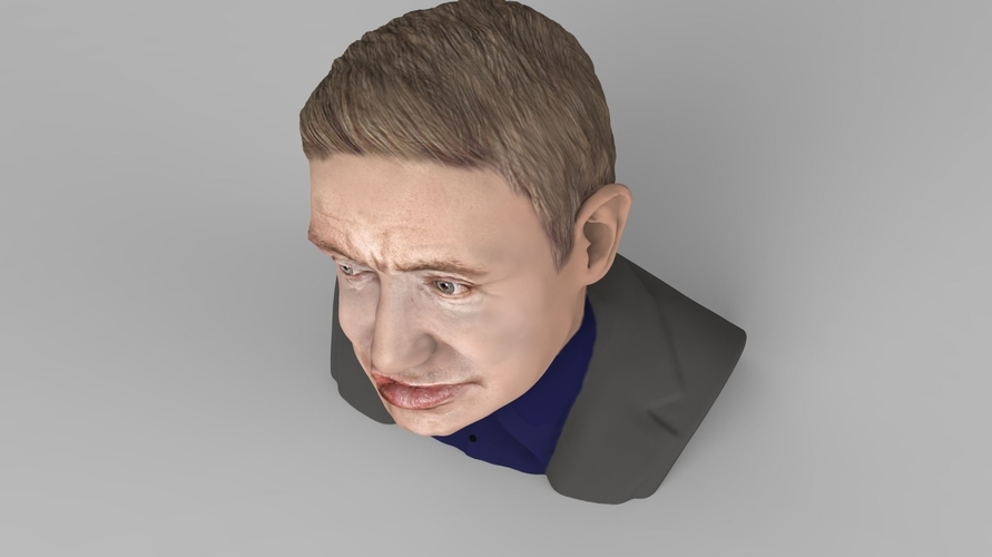 Stephen Hawking bust ready for full color 3D printing 3D Print 230640