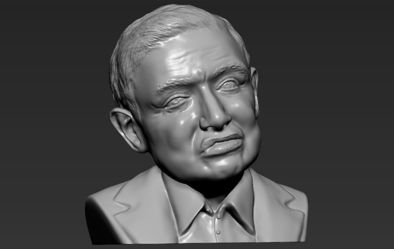 Stephen Hawking bust ready for full color 3D printing 3D Print 230647