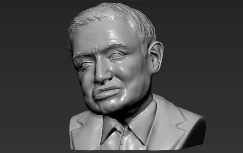 Stephen Hawking bust ready for full color 3D printing 3D Print 230650